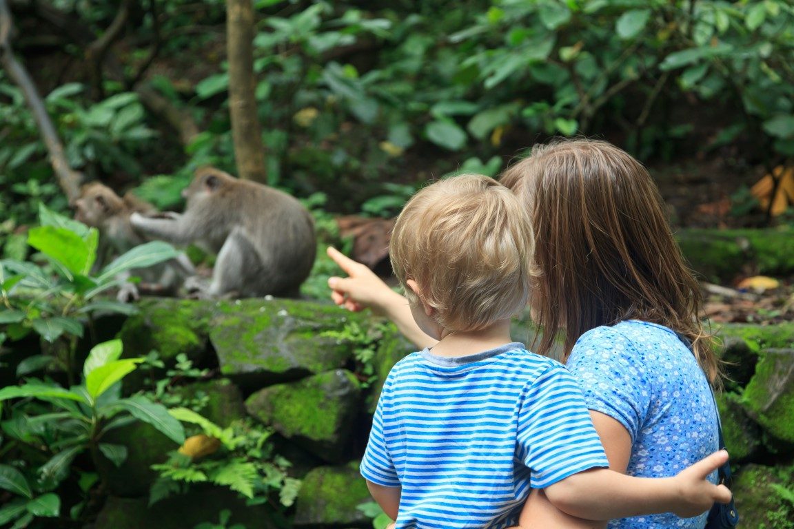 Checking out the zoo is a must when Exploring Belfast with the family