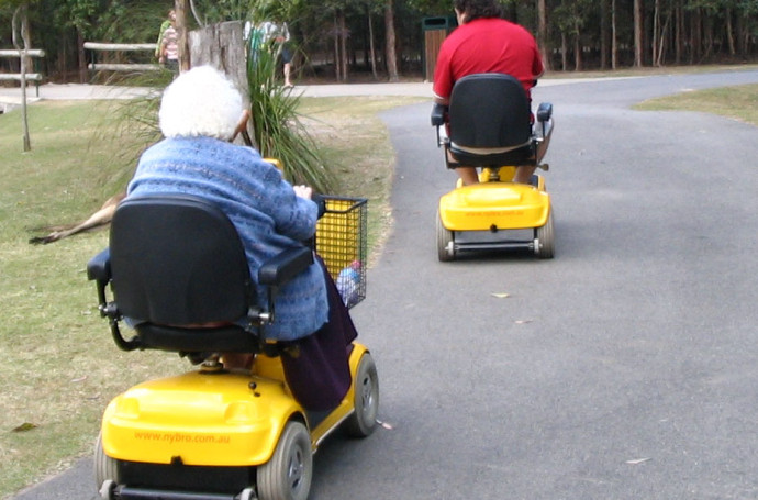 mobility_scooter_zoo