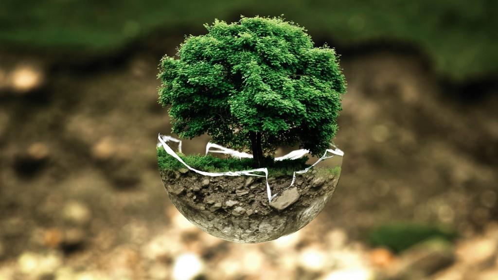 environmental-protection-environment-atmosphere-fragile-37856